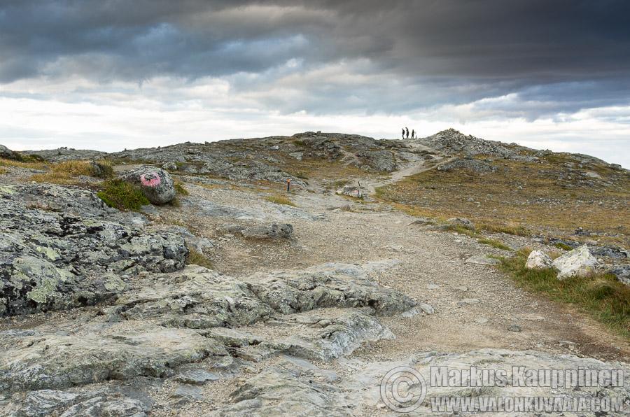 Saanan huippu. Valokuvaaja: Markus Kauppinen