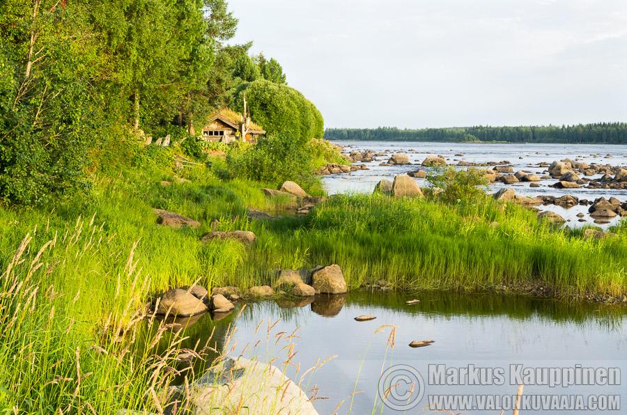 Kukkolankoski. Valokuvaaja: Markus Kauppinen